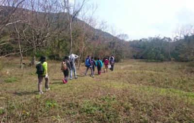 Land programs